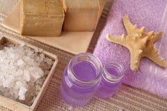 Serie de los cosméticos del BALNEARIO Fotos de archivo