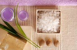 Serie de los cosméticos del BALNEARIO Imagen de archivo libre de regalías