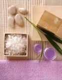 Serie de los cosméticos del BALNEARIO Fotografía de archivo