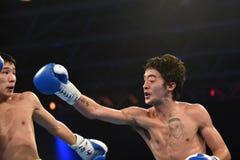 Serie de mundo de boxeo: Ucrania Otamans contra británicos Lionhearts Imagenes de archivo