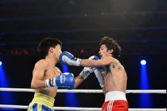 Serie de mundo de boxeo: Ucrania Otamans contra británicos Lionhearts Imágenes de archivo libres de regalías