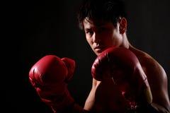 Serie del boxeador fotos de archivo