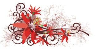 Serie del diseño floral imagenes de archivo