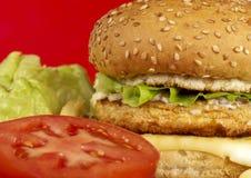 Serie dell'hamburger Immagine Stock