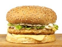 Serie dell'hamburger Fotografia Stock Libera da Diritti