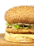 Serie dell'hamburger Immagine Stock Libera da Diritti