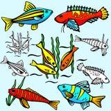 Serie dell'illustrazione di Seaworld Immagine Stock