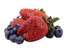 Serie della frutta (mirtilli e fragole isolati) Fotografia Stock Libera da Diritti