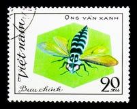 Serie della ONG Van Xahn, delle api e delle vespe, circa 1982 Immagini Stock