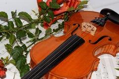 Serie 2 della serie di amore del violino Fotografia Stock