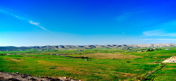 Serie della Terra Santa - Negev in #2 verde Fotografie Stock Libere da Diritti