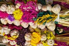 Serie di aglio Fotografia Stock Libera da Diritti