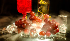 Serie di alcool del vino su fondo nero Immagine Stock
