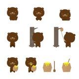 Serie di caratteri animale della fauna selvatica, illustrazione di progettazione di massima dell'orso Fotografie Stock