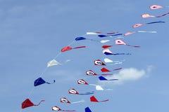 Serie di cervi volanti Immagine Stock