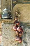 Serie di cipolle rosse Immagini Stock Libere da Diritti