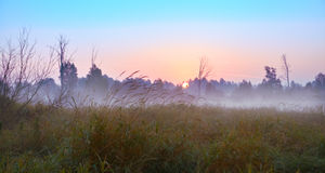 Serie di mattina nebbiosa di autunno dei paesaggi Fotografia Stock Libera da Diritti