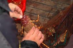 Serie di pesca - aragosta in una rete fotografia stock libera da diritti