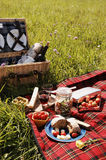 Serie di picnic Fotografia Stock Libera da Diritti