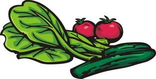 Serie di verdure dell'illustrazione Immagine Stock Libera da Diritti