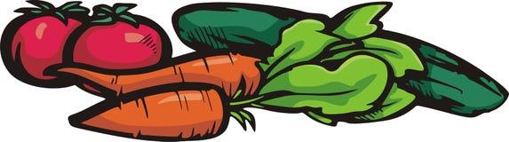 Serie di verdure dell'illustrazione Immagini Stock Libere da Diritti