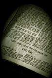 serie för bibelpeter sepia Royaltyfria Bilder