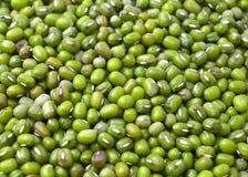 serie för green för mat för bakgrundsbakgrundsbönor arkivfoton