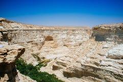 Serie för heligt land - Ein Avdat kanjonnationalpark royaltyfria foton
