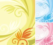 Serie floral del fondo Imágenes de archivo libres de regalías