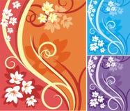 Serie floral del fondo Imagen de archivo