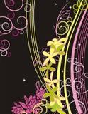 Serie floral del fondo Fotos de archivo