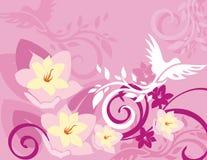 Serie floral del fondo del pájaro Foto de archivo libre de regalías