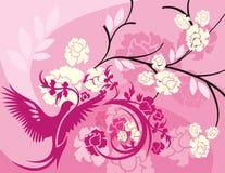 Serie floral del fondo del pájaro Foto de archivo