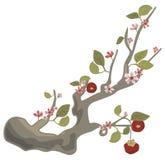 Serie floreale della filiale illustrazione di stock
