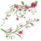 Serie floreale della filiale illustrazione vettoriale