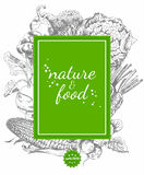 Serie - fruta, verduras y especias del vector Menú del alimento biológico Sistema de verduras, de frutas y de especias Cartel de  stock de ilustración