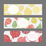 Serie of Harvest berry ornament. Set of Horizontal Fruit Banners Royalty Free Stock Photos