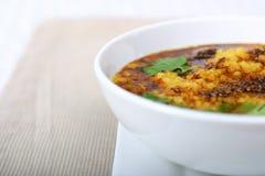 Serie india del alimento - sopa de lenteja (Dal) imagen de archivo libre de regalías