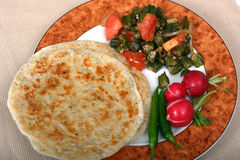 Serie indiana dell'alimento - pasto vegetariano immagini stock