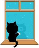 Serie negra del gatito Foto de archivo libre de regalías