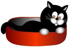 Serie nera del gattino Fotografie Stock