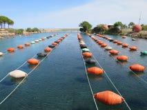 Serie pławiki na morzu dla pieczarkowy uprawiać ziemię Obraz Royalty Free