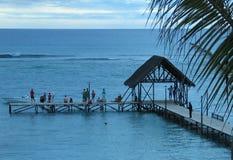 Serie tropical imagen de archivo