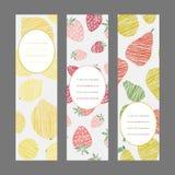 Serie van het ornament van de Oogstbes Reeks Verticale Fruitbanners Stock Fotografie