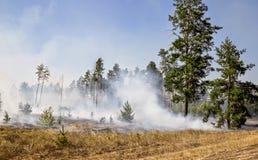 Serie van wildfire schoten stock fotografie