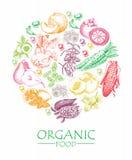 Serie wektorowa owoc, warzywa i pikantność -, Żywność organiczna Set warzywa, owoc i pikantność, Rolny posiłek plakat menu royalty ilustracja