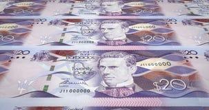 Banknotes of twenty dollars of Barbados island rolling, cash money, loop. Series of banknotes of twenty dollars of the bank of Barbados Island rolling on screen vector illustration