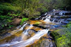 Leura Cascades in the Blue Mountains National Park, Australia. Series of cascading waterfalls known as Leura Cascades in the Blue Mountains National Park near stock images