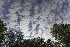 A series of clouds rushes over the trees. A series of clouds rushes over the top of the trees Stock Photos