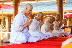 series de la ceremonia de la ordenación que cambian a los hombres jovenes tailandeses Foto de archivo libre de regalías